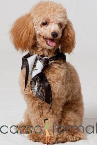 Puppy Dog Bandana Tie